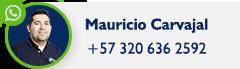 Habla por Whatsapp con Mauricio Carvajal!