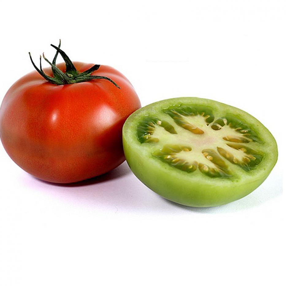 Tomate Milano