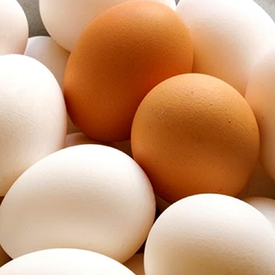 Medio Panal de Huevos AAA