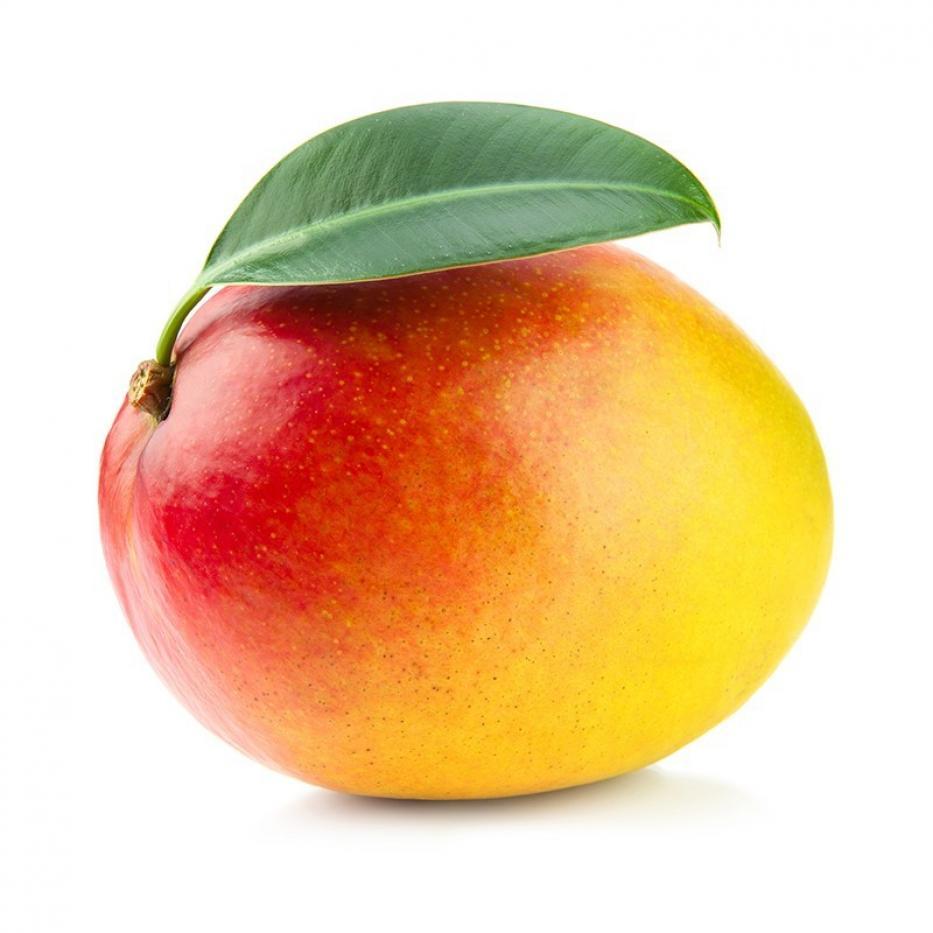 Mango Tomy