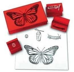 BUTTERFLY LIFE CYCLE STAMP