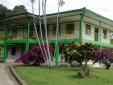 Hacienda Ganadera Y Productora De Cítricos En Venta Via La Virginia Viterbo