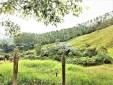 Finca productiva para la Venta en  Santa Rosa de Cabal