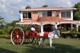 Se  Vende Finca de Recreo en el   sector  de  Altagracia Pereira