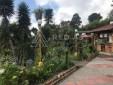 Eco Hotel para la venta en  Sector El Manzano Via a Armenia