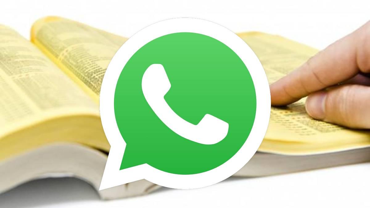 WhatsApp incorpora una nueva función que se asemeja a las «páginas amarillas»