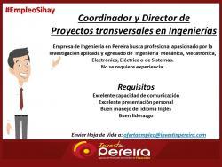 Coordinador y Director de proyectos Transversales en Ingenierias